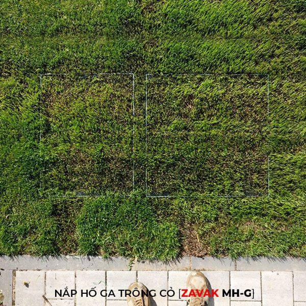 Nắp hố ga bằng inox ZAVAK MH-G trồng cỏ lên trên bề mặt sử dụng làm nắp đậy hố ga thoát nước sân vườn thẩm mỹ tiện lợi