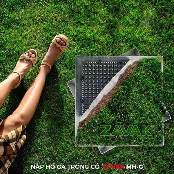 Nắp hố ga inox ZAVAK MH-G trồng cỏ lên trên bề mặt sử dụng làm nắp đậy hố ga sân vườn